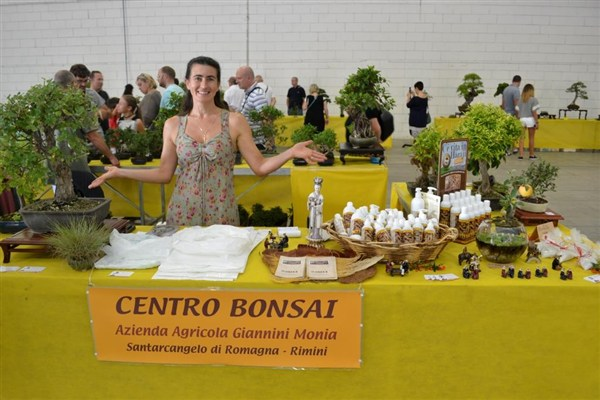 Fiere bonsai